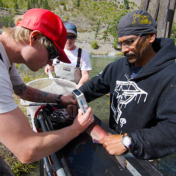 UBC and St'át'imc First Nations partner to study salmon migration